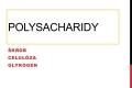 sacharidy-19