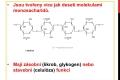 sacharidy-20