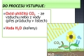 fotosynteza-03