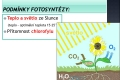 fotosynteza-05