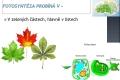 fotosynteza-09