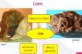 vlastnosti-mineralu-11