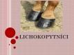 lichokopytnici-01