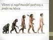 evoluce-08