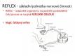 nervová soustava-1-07