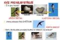 ptáci otevřené krajiny-20