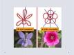 květy-05