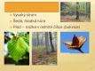 Listnaté stromy a keře-02