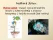 botanika-11