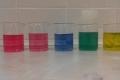 pH-zelí-08