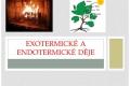exo,endodeje-01