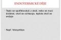 exo,endodeje-12