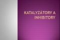 katalyzator-01