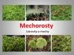 mechorosty-01