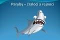 paryby-01