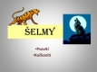 selmy-01