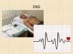 srdce-14